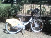 Brisbane City Bike Hire
