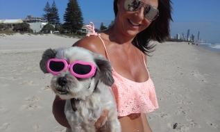 sunnies-dog
